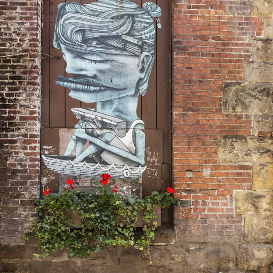 graffiti, walls, alley, alleyway, back alley, street art, tags, wall art, poster art, flower, geraniums, plants, ivy
